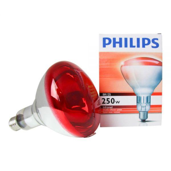 Bombilla lámpara infrarrojos 250W rosca E27